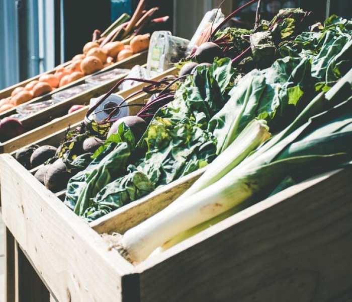 ¿Es sano ser vegetariano o vegano? Respondemos todas tus dudas